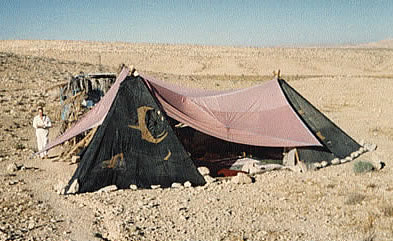 A temporary tent composition and an ammonit 60 million years old & App_Desert_Pyramidion_KingDavidsHarem